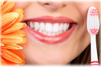 Bondi Dental | Prevent Gum Disease - Dentist Bondi